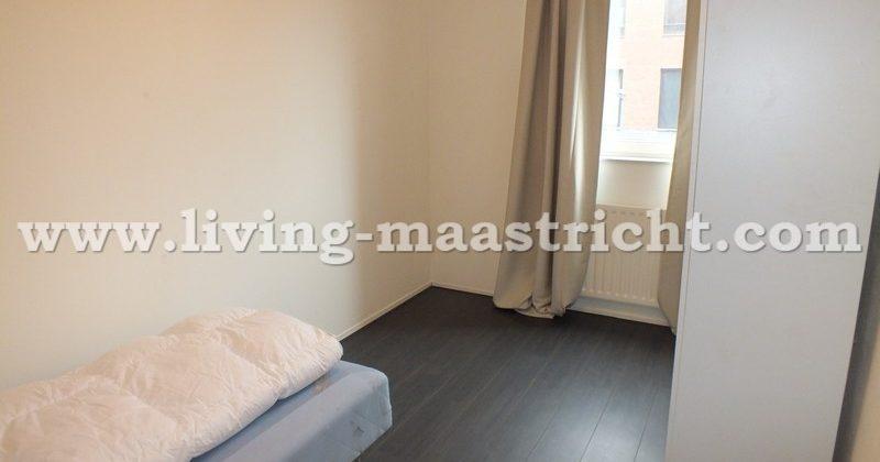 Remalunet Living Maastricht Housing